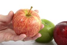 Free Apple In Hand Royalty Free Stock Photography - 970747