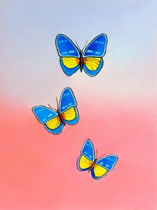 Free Blue And Yellow Butterflies Stock Photos - 971993