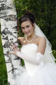 Free Bride Stock Images - 972004