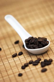 Free Coffee Beans Stock Image - 976971