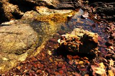 Free Stones In The River Royalty Free Stock Photos - 977108