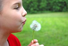 Free Girl Blowing Dandelion Stock Photo - 9701780