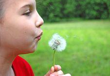 Free Girl Blowing Dandelion Stock Photo - 9701780
