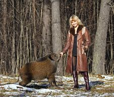Free Blonde Girl With Wild Boar Royalty Free Stock Images - 9702529