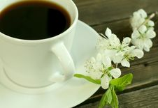 Free Cup Of Coffee And White Flowers Royalty Free Stock Photography - 9702967