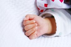 Free Baby Hand Royalty Free Stock Photography - 9705677