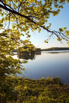 Free Island On Wood Lake Stock Image - 9706851