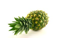 Free Whole Pineapple Royalty Free Stock Image - 9708326