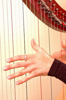 Playing A Harp Stock Image