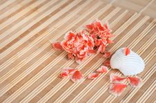 Free White Seashell And Flowers Stock Images - 9710794