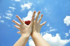 Free Heart In Hands Royalty Free Stock Photo - 9714465