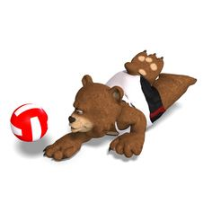 Funny Bear Plays Volleyball Stock Photos