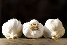 Free Garlic Stock Photos - 9716983