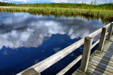 Free Boardwalk And Cloud Reflections Royalty Free Stock Image - 9717266