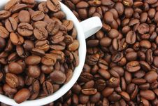 Free White Cup Filled With Coffee Beans Stock Images - 9719234