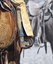 Free Horse Tack, Bridle, Horse, Rein Royalty Free Stock Images - 97141829