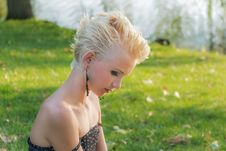 Free Hair, Human Hair Color, Grass, Blond Stock Images - 97152524