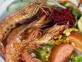 Free Shrimps Dish. Stock Photo - 9721230