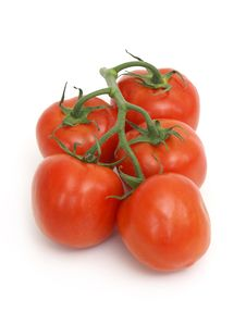 Free Tomato Vine Stock Image - 9722081