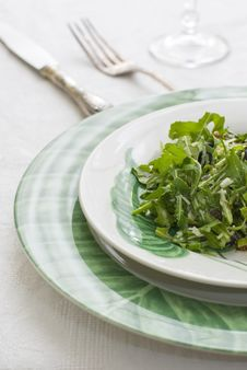 Free Plate Of Green Salad Royalty Free Stock Photos - 9722088