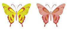 Free Butterfly Stock Image - 9728841