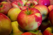 Free Natural Foods, Fruit, Apple, Local Food Royalty Free Stock Photography - 97213677