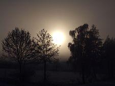 Free Sky, Tree, Atmosphere, Sunrise Royalty Free Stock Image - 97221796