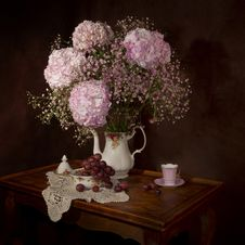 Free Flower, Still Life, Lilac, Still Life Photography Royalty Free Stock Images - 97287109
