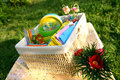Free Color Summer Picnic Accessories In A Basket Royalty Free Stock Photos - 9732628