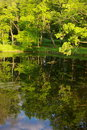 Free Park Trees And Pond Royalty Free Stock Photo - 9733485