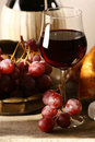 Free Red Vine Stock Images - 9739004