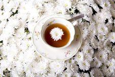 Free Tea Royalty Free Stock Photography - 9730377