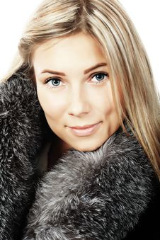 Free Black Fur Stock Image - 9730701