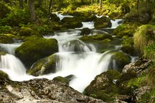 Free Rapids Royalty Free Stock Image - 9732096