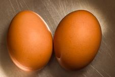 Free Brown Eggs Stock Images - 9732444