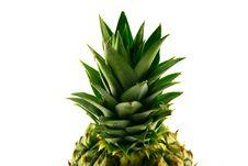Free Pineapple Top Royalty Free Stock Image - 9734036