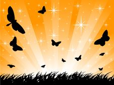 Free Butterfly Silhouette Royalty Free Stock Images - 9736769