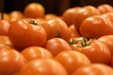 Free Group Of Tomatoes Stock Photography - 9738452