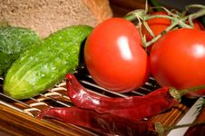 Free Tomatoes, Cucumbers, Pepper And Bread Royalty Free Stock Images - 9738699
