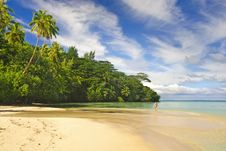 Free Tropical Beach Stock Image - 9739931