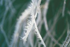 Free Swirley Bokeh Ice Crystal Stock Image - 97312641