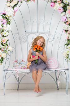 Free Pink, Flower, Sitting, Flower Arranging Stock Images - 97349134