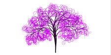 Free Pink, Tree, Leaf, Purple Royalty Free Stock Photography - 97349857