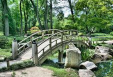Free Nature, Nature Reserve, Vegetation, Bridge Stock Photo - 97353230