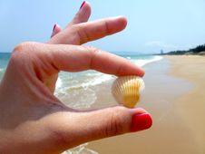 Free Seashell, Hand, Finger, Sand Stock Photography - 97359302