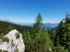Free Bavarian Forests Royalty Free Stock Image - 97381376