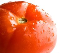 Free Tomato Royalty Free Stock Photography - 9741587