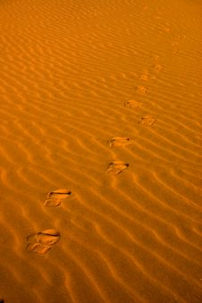Free Footsteps In The Sand Royalty Free Stock Image - 9743256