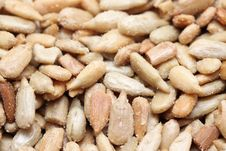 Free Peanuts Stock Photo - 9743490