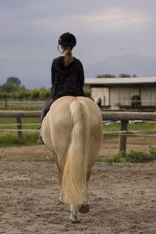 Free Schoolgirl Horseback Stock Photography - 9743892